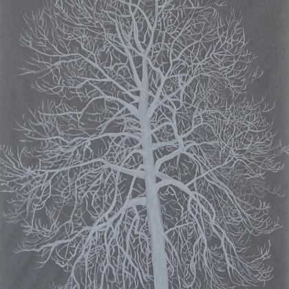 Frêne commun, 2017, technique mixte sur papier calque, 21 x 30 cm