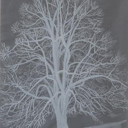 Tilleul, 2017, technique mixte sur papier calque, 21 x 30 cm