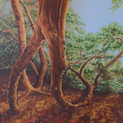 Historical beech, La Grange park, 2017, mixed media on cancas, 122 x 170 cm