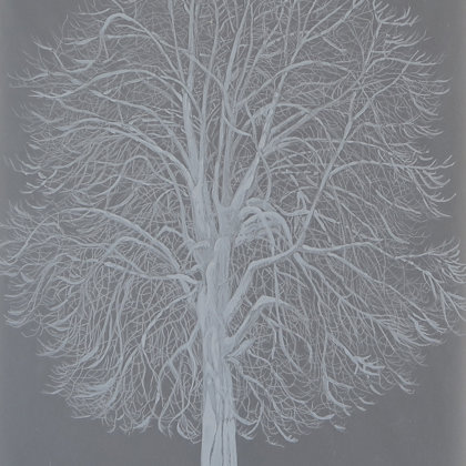 Chestnut, 2017, mixed technique on translucent paper, 21 x 30 cm