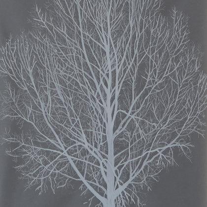 Black poplar, 2017, mixed media on translucent paper, 21 x 30 cm